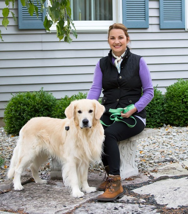 Gipper and the Easy Walk Harness - Arthritis Wisdom